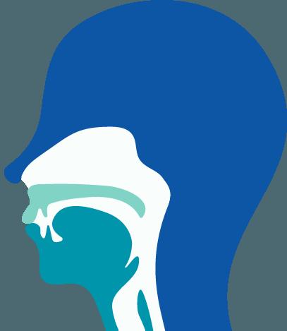耳鼻咽喉科のイラスト